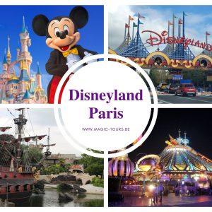 Disney 1 jour